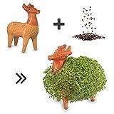 Anzuchtset für Keimsprossen & Keimlinge aus Chia Samen - Chia Pets bzw. Chia Tiere - 100% handgemachte Tonfigur als Geschenk für Kinder & Freunde - inkl. Samen zum natürlichen Keimen (Rentier)
