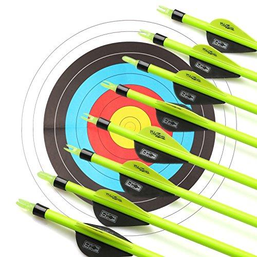 Bogenschießen Pfeil 31 Zoll Carbon Bogenpfeile für Bogenschießen mit Blazer Vanes,Jagdpfeile für Bogen traditionellen Bogen Recurvebogen und Langbogen (12er set)