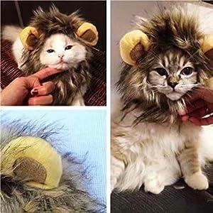 Stonges Perruque de perruque de lion de costume d'animal familier pour le chat de chien Halloween habiller avec des oreilles