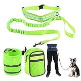 mioim Hunde Joggingleine Sport Laufgürtel mit Reflektierendem Bauchgurt für Hunde bis 60kg super zum Laufen, Joggen, Wandern Grün