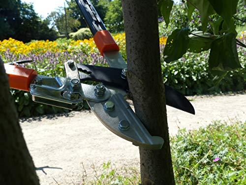 Garten Primus Astschere, Ratschenschere - 6