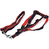 Wenquan,Cinturón de Correa Ajustable para arnés de arnés de Vaquero para Jugar al Aire Libre en el Perro de Mascota(Color:Rojo,Size:L)