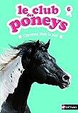Le club des poneys : Cheyenne dans la nuit (06)