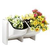 SODIAL 2 bolsillo suculento maceta colgante de pared vertical maceta Hogar/Jardin interior maceta de flores bolsas de plantador maceta maceta blanco