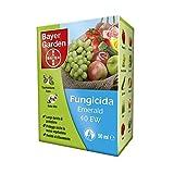 Bayer Garden 1353969 Fungicida Sistemico