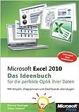 Microsoft Excel 2010 - Das Ideenbuch für visualisierte Daten: MitAmpeln,DiagrammenundDashboardsüberzeugen ( 6. Februar 2013 )