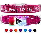 Taglory Personalisiert Hundehalsband/Bestickt mit Kosename und Nummer/Benutzerdefinierte LED-Lichtkragen/für kleine mittelgroße Hunde/Reflektierend/Kirsche