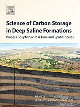 Science Of Carbon Storage In Deep Saline Formations: Process Coupling Across Time And Spatial Scales por Pania Newell