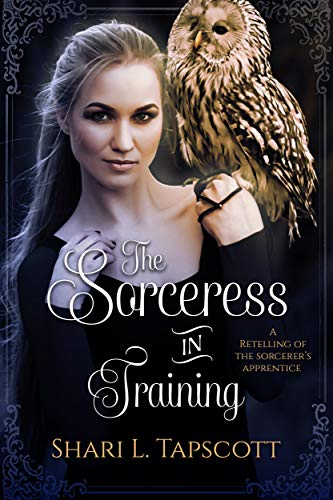 The Sorceress in Training: A Retelling of The Sorcerer's Apprentice (Fairy Tale Kingdoms Book 3) (English Edition)