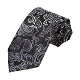 DAA7B04-06 Valentines Gift Paisley Tie Microfiber Designer Necktie By Dan Smith
