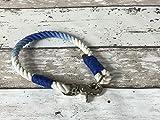 Tau-Halsband Größe 34-36cm Blau