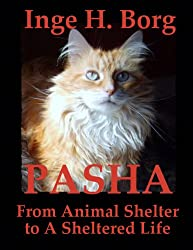 Pasha, From Animal Shelter to A Sheltered Life (English Edition)