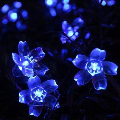 Innoo Tech 5m 50 Led Lichterkette Solar Blau Blumen Blten Fr Fest Deko Weihnachten Im Inneren Und Ausseren von Innoo Tech