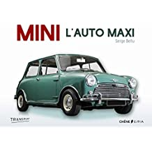 Mini la voiture maximum