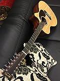 Guitares électro acoustiques MARTIN GPC12PA4 GRAND PERFORMANCE + ETUI 12 cordes électro
