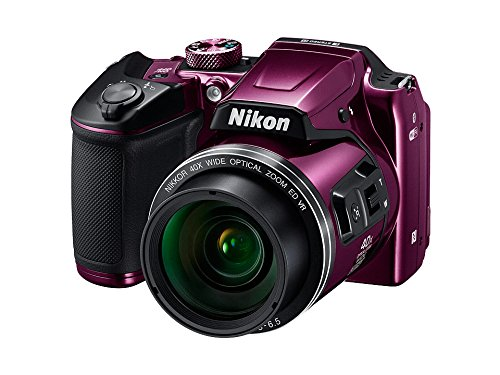 Nikon Coolpix B500 Camera (Red) with 8GB SD Card, Camera Bag, HDMI Cable and Battery Charger