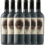 6er Paket - Goru Jumilla DO 2016 - Ego Bodegas | trockener Rotwein | spanischer Wein aus Murica | 6 x 0,75 Liter