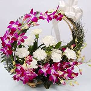 GlobalFlowerDelivery Fresh Orchid Flowers  (Bunch of 12, GFD 056)