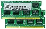 G.Skill PC3-8500 Arbeitsspeicher 4GB (1066 MHz, 204-polig) DDR3-RAM Kit