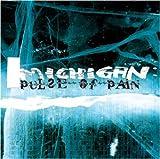 Songtexte von Michigan - Pulse of Pain