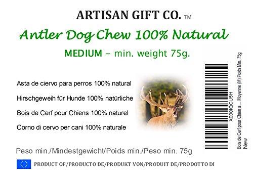 Hundesnack Rothirsch Geweih Kausnack – Mittel Größe (M) Mindestgewicht 75 Gramm (1 Stück) - 2