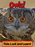 Image de Owls! Learn About Owls and Enjoy Colorful Pictures - Look and Learn! (50+ Photos of Owls) (English Edition)