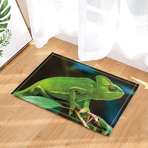 YYAANNGG Tierisches dekoratives grünes Chamäleon, das auf Einer Niederlassung Badteppich Rutschfeste Türmatte Wohnzimmer Kinderteppich Badezimmerzubehör 40x60cm liegt