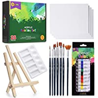 RISEBRITE Acrylic Paint Set with Canvas – 25Pcs Painting Kit Includes Mini Easel, Premium Painting Supplies, Brushes, Art Canvases and More | Painting Set for Kids, Beginners, or Budding Artists