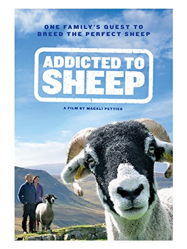 addicted-to-sheep