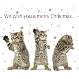'Little Wishes' Tabby cat dancing 10 pack of small square Christmas cards