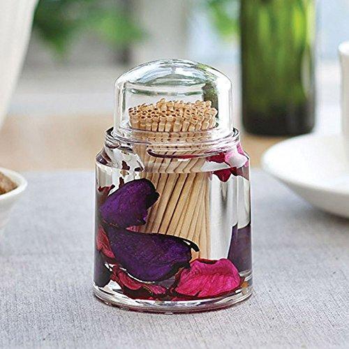 Freelance Eden Acrylic Kitchen & Dining, Toothpick Dispenser Box Holder...