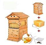 Maison en Bois Automatique en Forme de Ruche 7p Cadre en Forme de Ruche en Bois pour Abeilles et équipement pour Apiculture