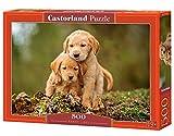 Castorland Puppy Love 500 pcs Puzzle - Rompecabezas (Puzzle Rompecabezas, Flora, Niños y Adultos, Perro, Niño/niña, 9 año(s))