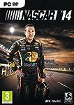 NASCAR The Game 2014