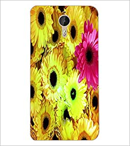 PrintDhaba Flowers D-3867 Back Case Cover for LETV (LE ECO) LE 1 PRO (Multi-Coloured)
