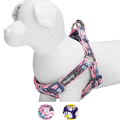 Blueberry Pet Step-in Rosy Prints Girly Adjustable No Pull Neoprene Padded Dog Harness, Chest Girth 42cm-54cm
