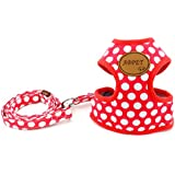 SMALLLEE_LUCKY_STORE New Soft Mesh Nylon Vest Pet Cat Small Medium Dog Harness Dog Leash Set Leads Red S by smalllee_lucky_store
