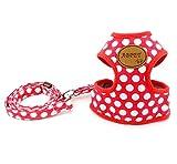 smalllee_lucky_store, weiche Mesh-Nylonweste Pet Cat, Größe S und Größe M, Hundeleine- Set, rot, Größe M
