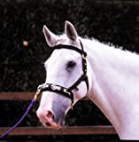 Padded Lunge Cavesson (headcollar) Fully Adjustable And With Brow Band In Black, Size: Cob (Cob)
