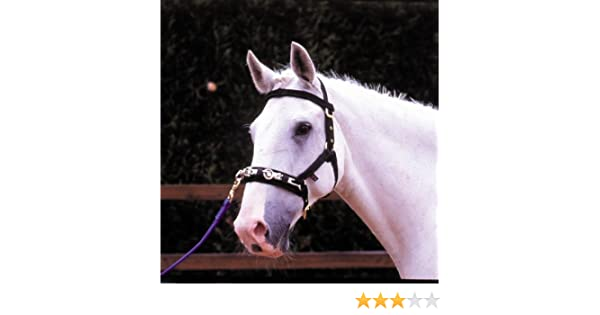 Choose from Sizes Small or Large Fully Adjustable on Head Nose and Throat Featuring brow Band Attachment. William Hunter Equestrian Hy Lunge Cavesson - 3 Buckle