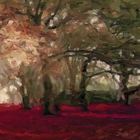 Forest Floor Crimson B by Greene, Taylor-Stampa su tela in