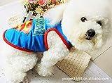 GHJFGJNF Dog Clothes Pet Supplies Misc Spring and summer pet clothes dog clothes dog superman cool mesh vest (Color : Ash, Size : S) Cat Clothes (Color : Blue, Size : S)