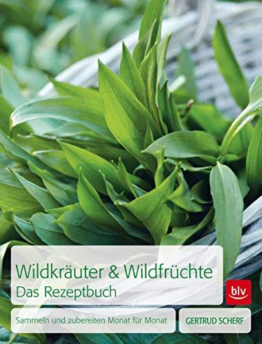 Wildkräuter & Wildfrüchte Das Rezeptbuch: Sammeln und zubereiten Monat für Monat