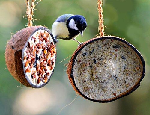 dobar Zehn gefüllte Kokosnüsse in 5 Vogelfutter-Sorten zum Aufhängen - 9