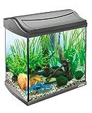 Tetra AquaArt Discovery Line LED Aquarium-Komplett-Set 30 Liter anthrazit (inklusive LED-Beleuchtung, Tag- und Nachtlichtschaltung und EasyCrystal Innenfilter, ideal für Krebse und Garnelen) - 5