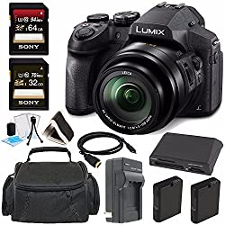 Panasonic Lumix DMC-FZ300 Digital Camera + 32GB + 64GB Greens Camera Bundle 5