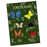 Mr. & Mrs. Panda Postkarte Schmetterlinge - 100% handmade in Norddeutschland - Karton, Karte, Pappe, Sprüche, Postkarte, Grußkarte, Blumen Motiv, Papier, Deko Wohnung, Tier Motiv, Natur Motiv, Ansichtskarte