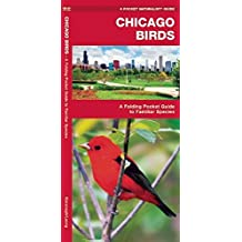 Chicago Birds: A Folding Pocket Guide to Familiar Species (A Pocket Naturalist Guide)