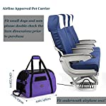 purple pet carrier for dogs cats comfort travel tote soft sided bag with mat Purple Pet Carrier for Dogs Cats Comfort Travel Tote Soft Sided Bag with Mat 51nbwY KsRL