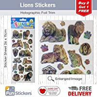Fun Stickers Lions 935 by Funstickers